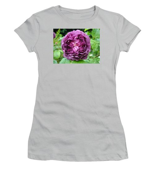 Purple English Rose Women's T-Shirt (Athletic Fit)
