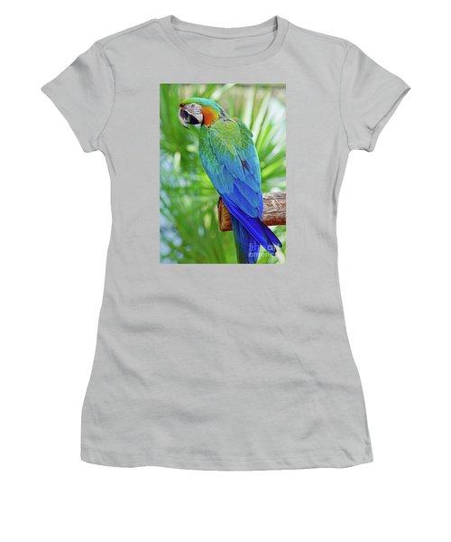 Rapsody In Blue Women's T-Shirt (Junior Cut) by Larry Nieland