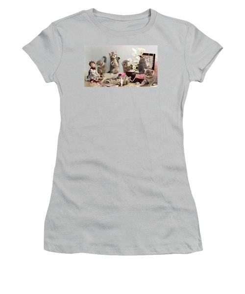 Scottish Fold Cats Women's T-Shirt (Junior Cut) by Evgeniy Lankin