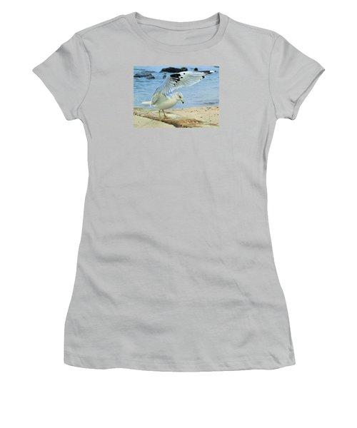 Women's T-Shirt (Junior Cut) featuring the photograph Seagull On The Beach by Nina Bradica