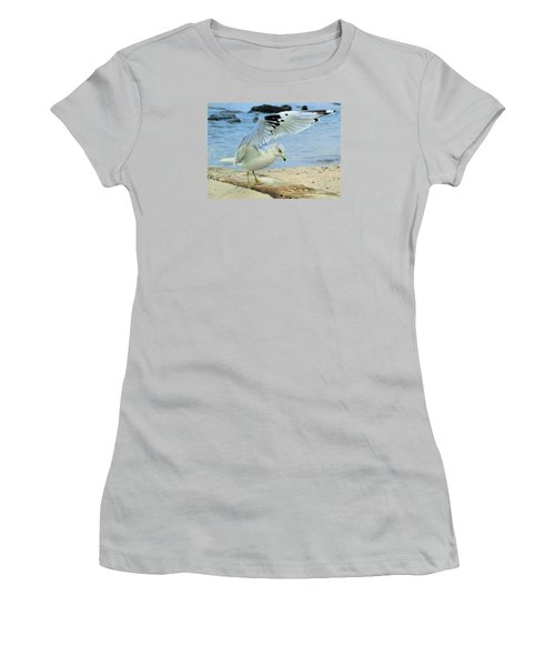 Seagull On The Beach Women's T-Shirt (Athletic Fit)