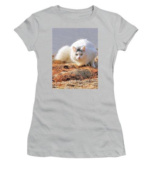 Shore Kitty Women's T-Shirt (Junior Cut) by Debbie Stahre