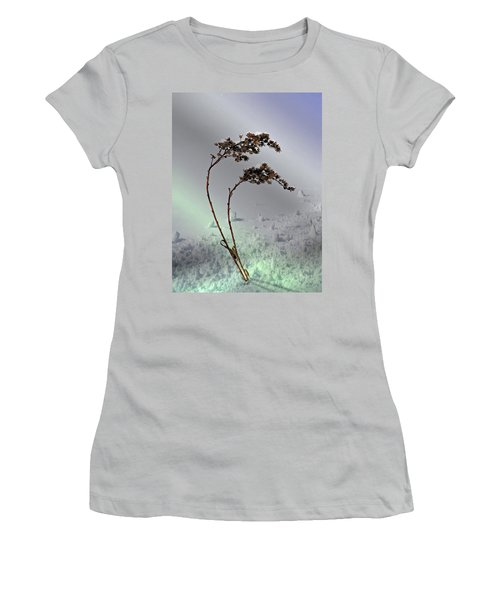Snow Covered Weeds Women's T-Shirt (Junior Cut) by Judy Johnson