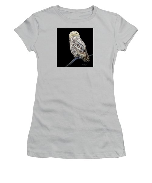 Snowy Owl On Black Women's T-Shirt (Junior Cut) by Constantine Gregory
