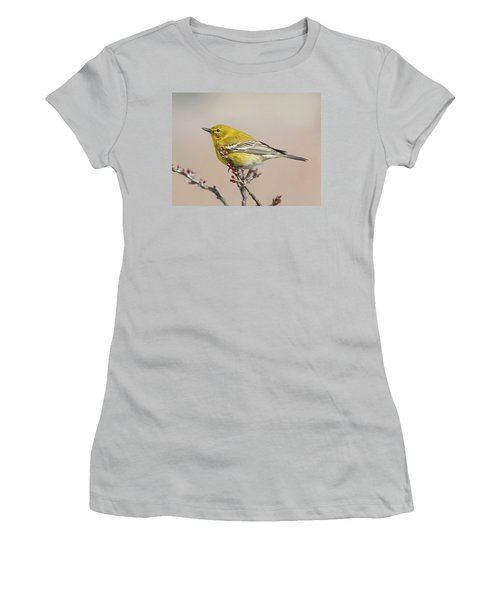 Spring Warbler 1 2017 Women's T-Shirt (Junior Cut)