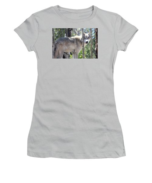 Timber Wolf Women's T-Shirt (Athletic Fit)