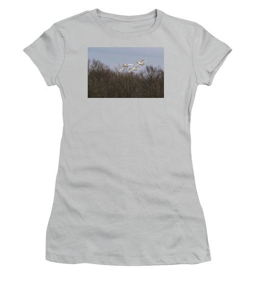 Tundra Swan Trio Women's T-Shirt (Athletic Fit)