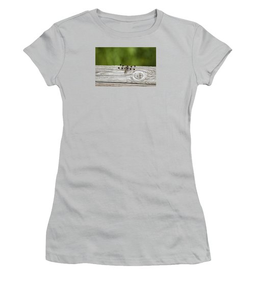 Twelve Spotted-skimmer 20120703_213a Women's T-Shirt (Athletic Fit)