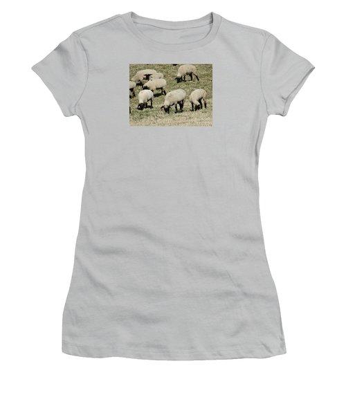 Wandering Wool Women's T-Shirt (Junior Cut) by J L Zarek