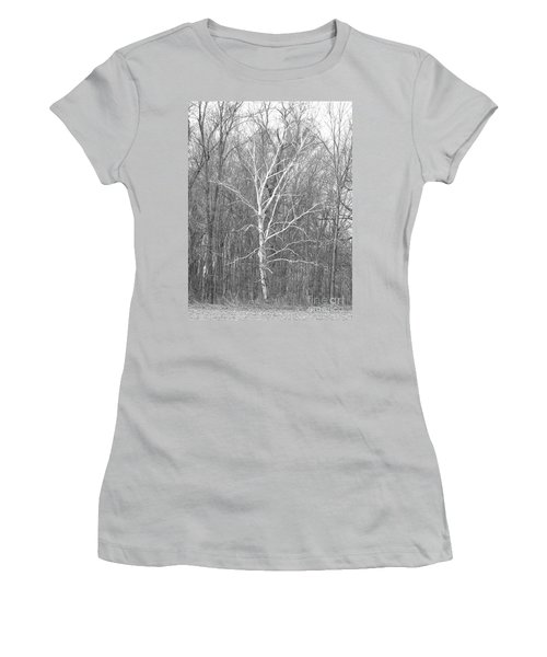 White Birch In Bw Women's T-Shirt (Junior Cut) by Erick Schmidt