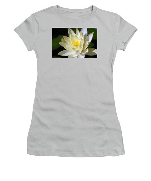 White Water Lily Women's T-Shirt (Junior Cut) by Donna Bentley
