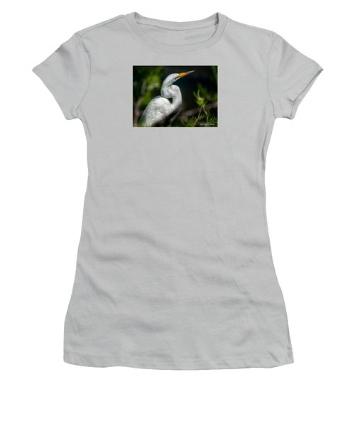 Women's T-Shirt (Junior Cut) featuring the photograph White Egret 2 by Christopher Holmes