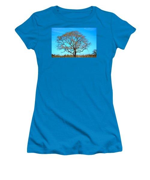 Women's T-Shirt (Junior Cut) featuring the photograph Beautiful Branching by Debra Martz