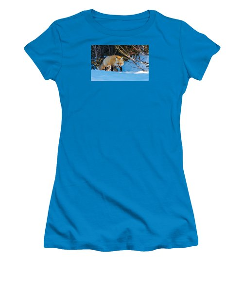 Women's T-Shirt (Junior Cut) featuring the photograph Red Fox In Winter Snow by Yeates Photography