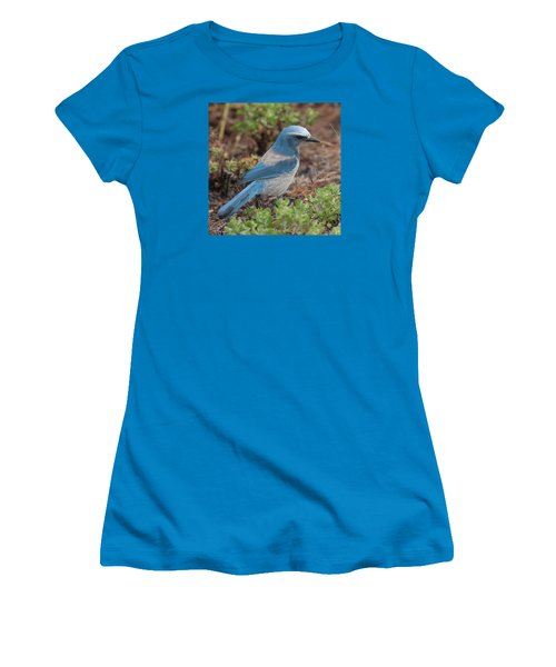Scrub Jay Framed In Green Women's T-Shirt (Athletic Fit)