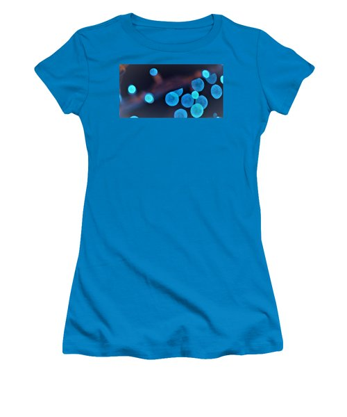 Winter Lights Women's T-Shirt (Junior Cut) by John Glass