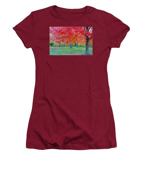 Autumn In Central Park Women's T-Shirt (Athletic Fit)
