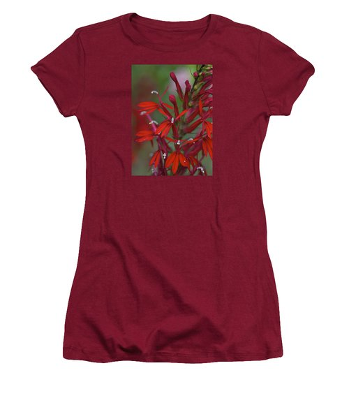 Cardinal Flower Women's T-Shirt (Athletic Fit)