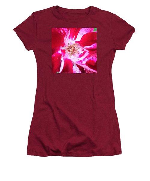 Peppermint Swirls Women's T-Shirt (Junior Cut) by Anna Porter