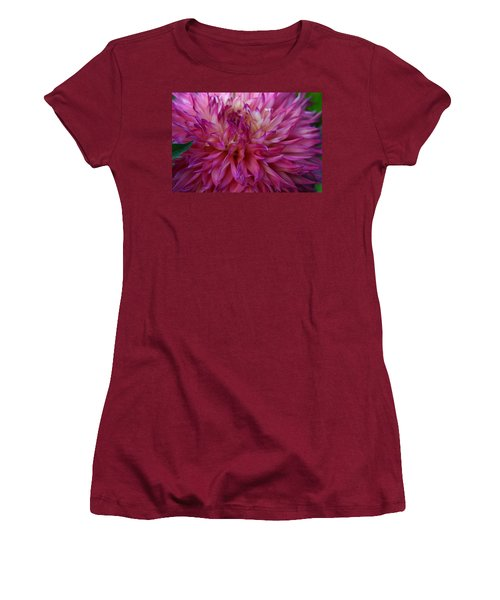 Women's T-Shirt (Junior Cut) featuring the photograph Pink And White Dahlia  by Denyse Duhaime