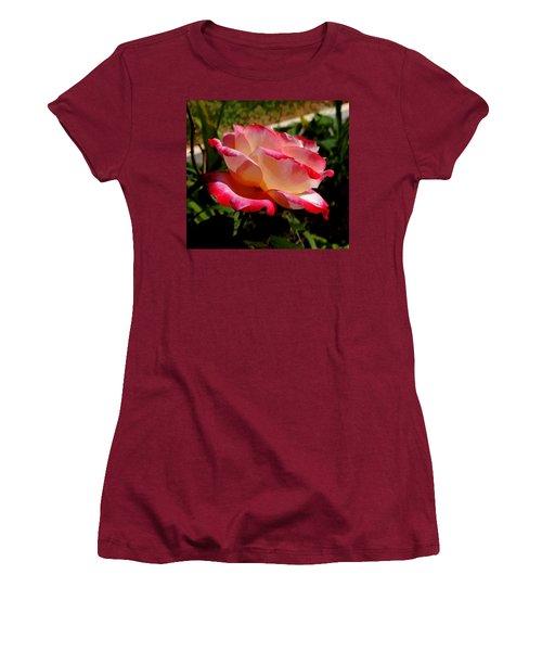 Single Rose Women's T-Shirt (Junior Cut) by Pamela Walton