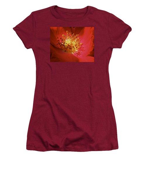 Striking It Rich Women's T-Shirt (Junior Cut) by Richard Cummings
