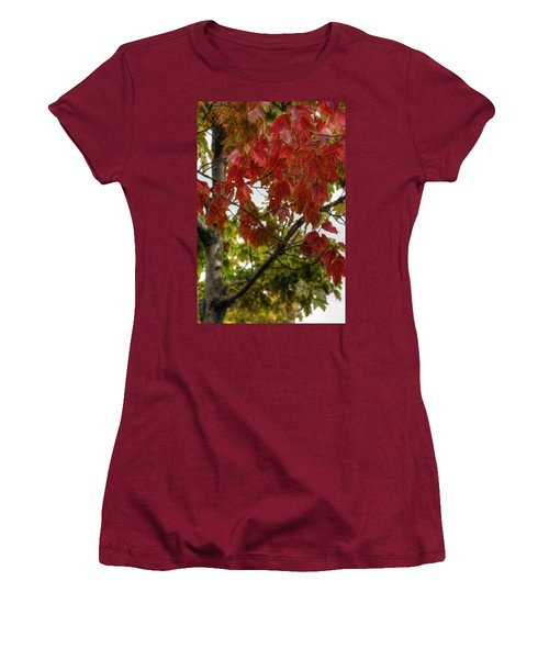 Women's T-Shirt (Junior Cut) featuring the photograph Red And Green Prior X-mas by Michael Frank Jr