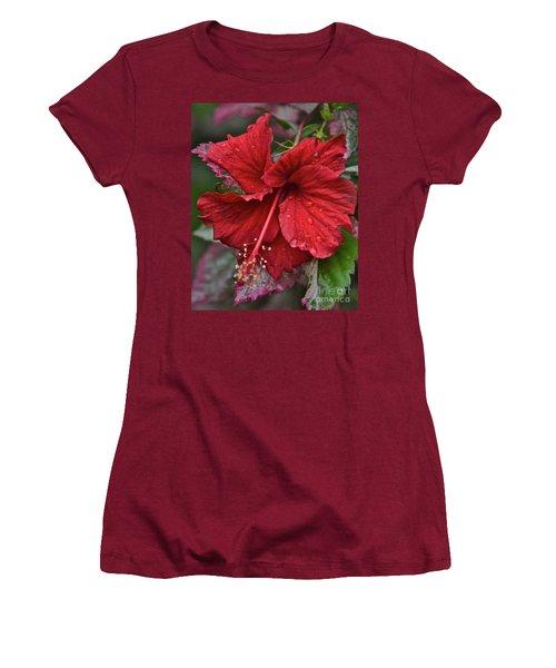 After The Rain Women's T-Shirt (Junior Cut) by Carol  Bradley