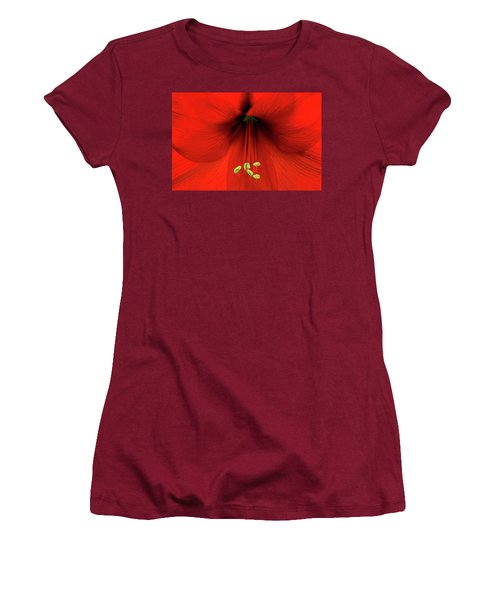 Amaryllis Women's T-Shirt (Junior Cut) by Denis Lemay