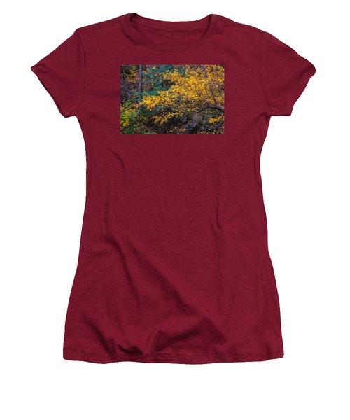 Colorful Trees Along The Creek Bank Women's T-Shirt (Junior Cut) by John Brink
