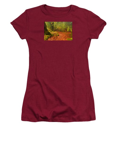 Dunstaffnage Castle Gardens Women's T-Shirt (Junior Cut)