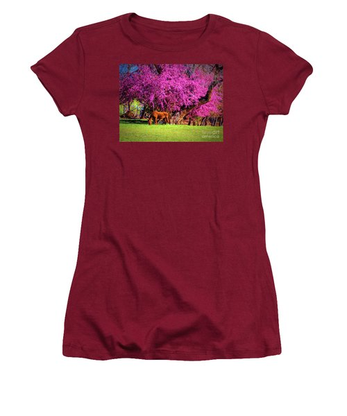 Grazing Horse  ... Women's T-Shirt (Junior Cut) by Chuck Caramella