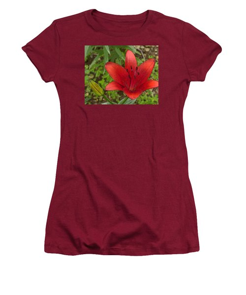 Hazelle's Red Lily Women's T-Shirt (Athletic Fit)