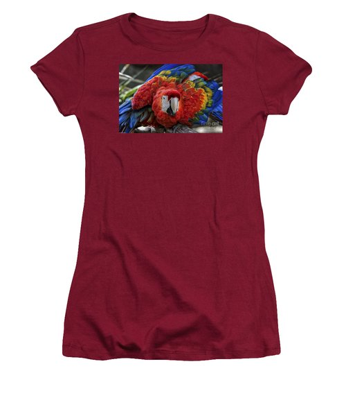 Macaw Parrot Women's T-Shirt (Junior Cut) by Mitch Shindelbower
