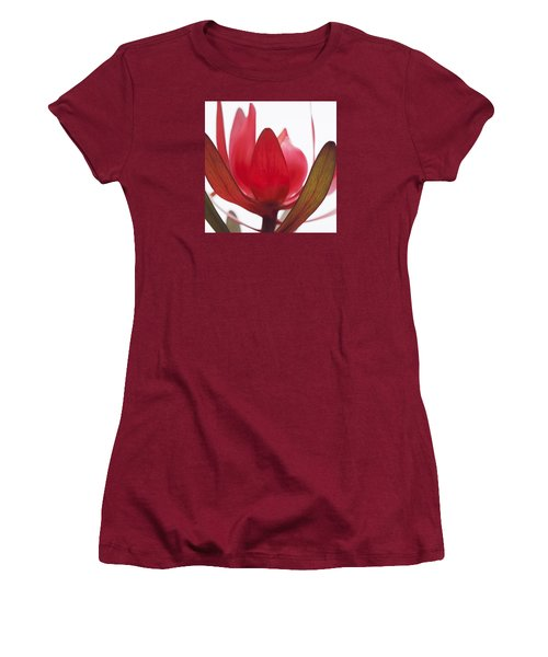 Petals Women's T-Shirt (Junior Cut) by Margaret Hormann Bfa
