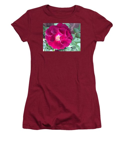 Rambling Rose Women's T-Shirt (Athletic Fit)