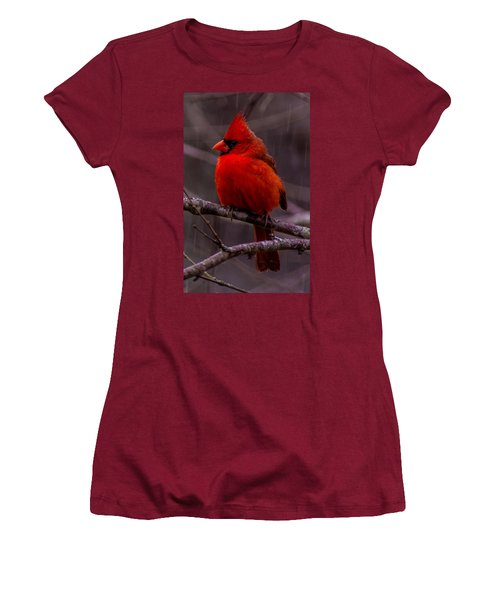 Red Bird Women's T-Shirt (Athletic Fit)