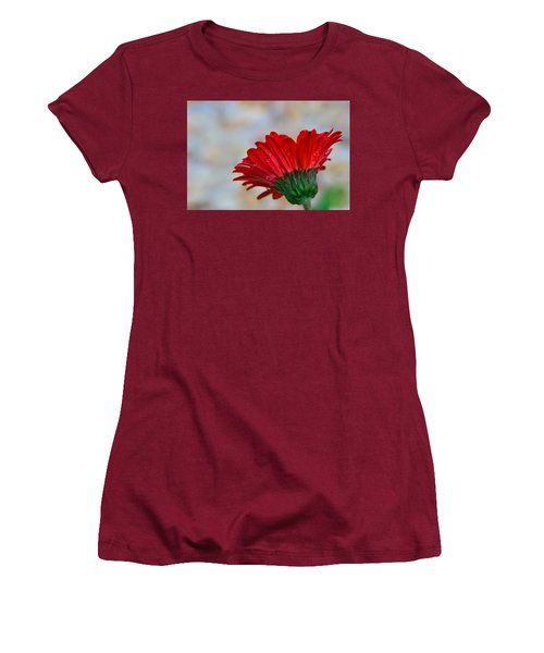 Women's T-Shirt (Junior Cut) featuring the photograph Red Daisy  by John Harding