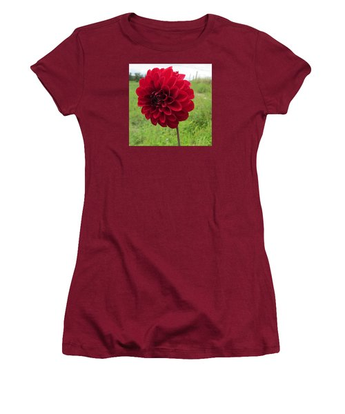 Women's T-Shirt (Junior Cut) featuring the photograph Red, Red, Red by Jeanette Oberholtzer