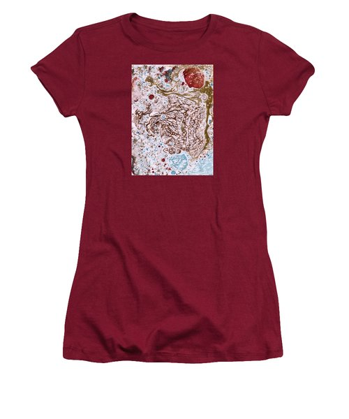 Snapping Turtle In The Sun Women's T-Shirt (Junior Cut) by Phil Strang