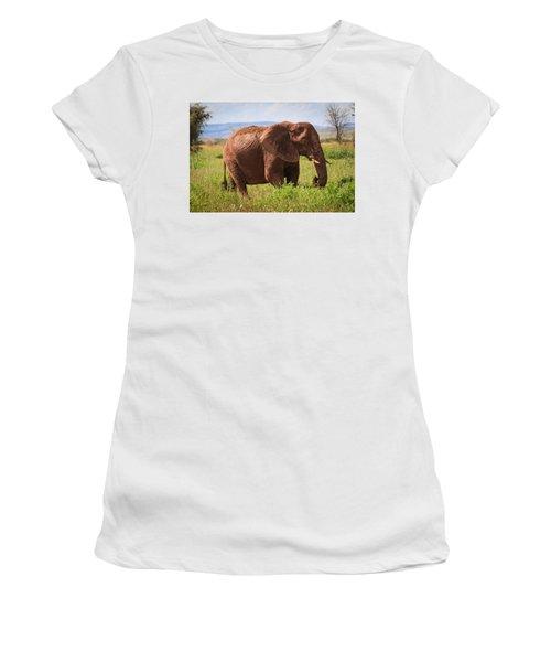 African Desert Elephant Women's T-Shirt (Athletic Fit)