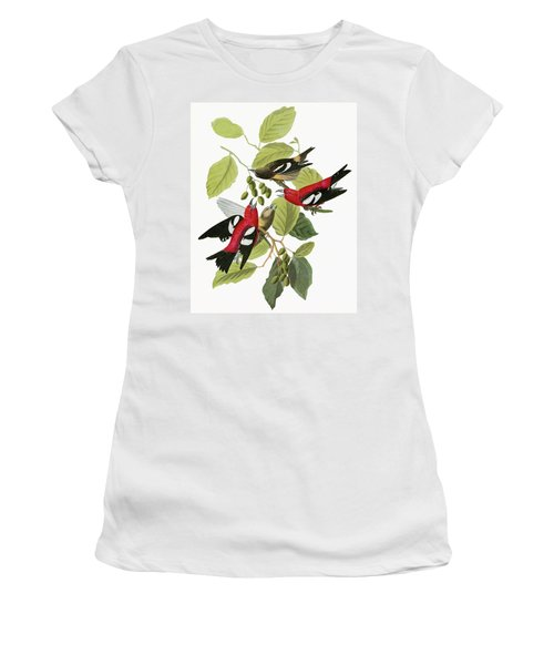Audubon Crossbill Women's T-Shirt (Athletic Fit)