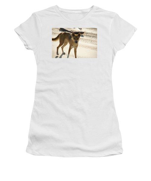 Dingo Women's T-Shirt (Athletic Fit)