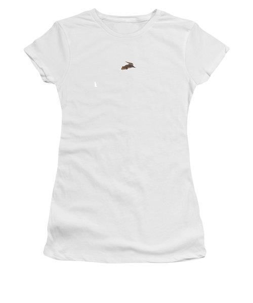 Salamander Women's T-Shirt