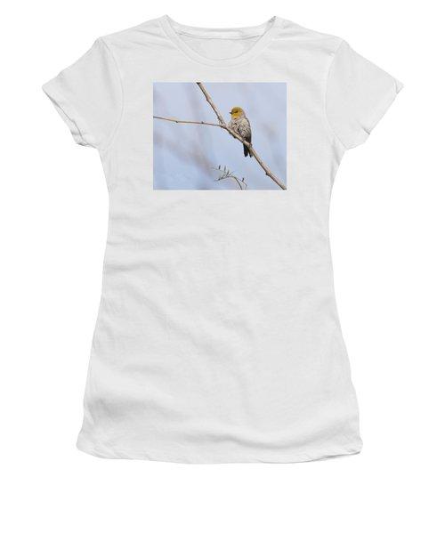 Verdin Women's T-Shirt (Athletic Fit)