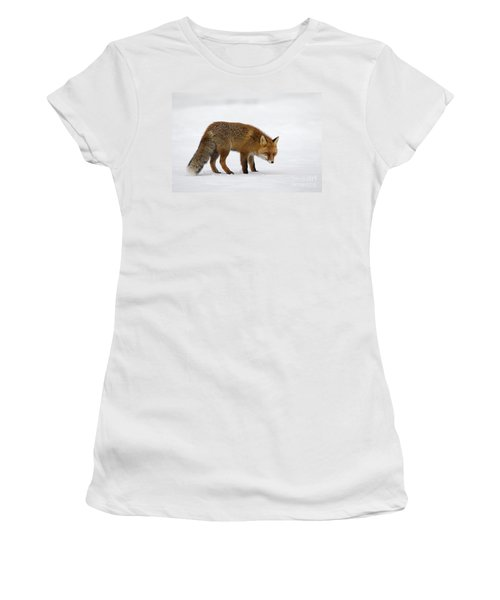 Women's T-Shirt (Junior Cut) featuring the photograph 130201p051 by Arterra Picture Library