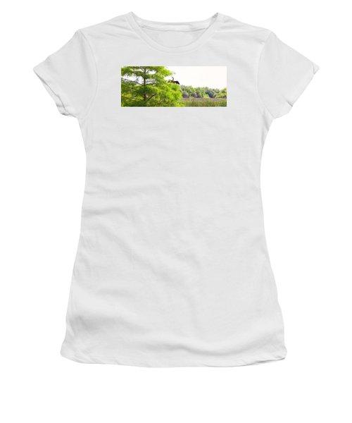 Anhinga Anhinga Anhinga On A Tree Women's T-Shirt (Athletic Fit)