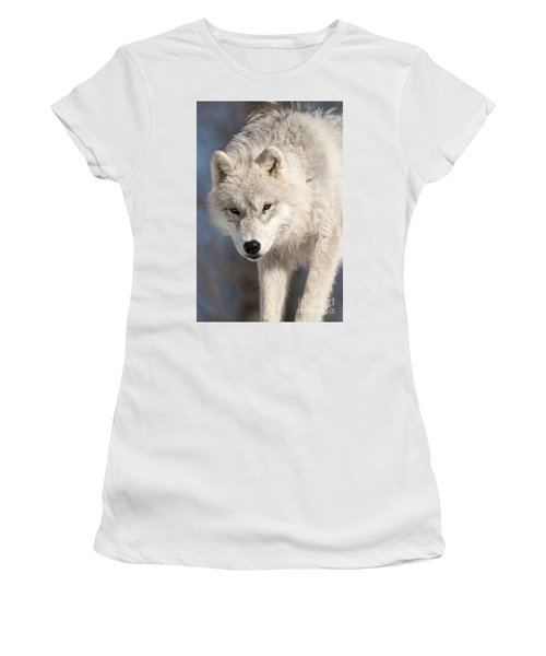 Arctic Wolf Pup Women's T-Shirt (Athletic Fit)