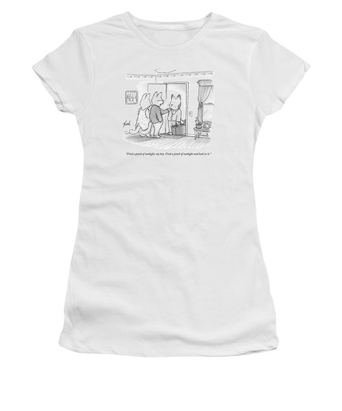 A Family Of Three Cats In A House Women's T-Shirt