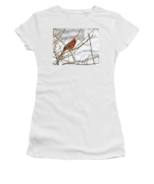 Another Snowy Day Women's T-Shirt